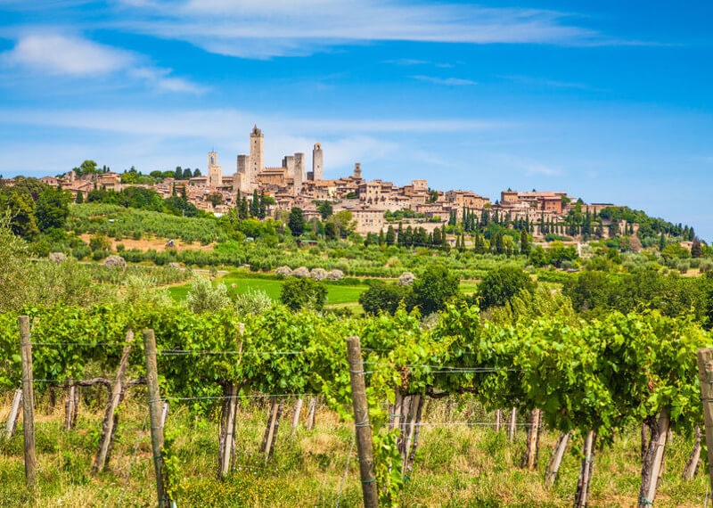 San Gimignano Vineyard Tour